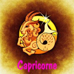 Horoscope Capricorne 2019
